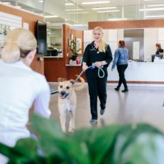 SVS clinic dog and client